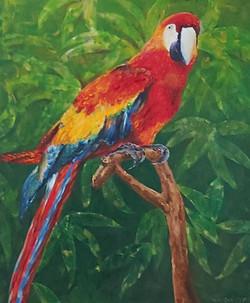 Papiga-akril