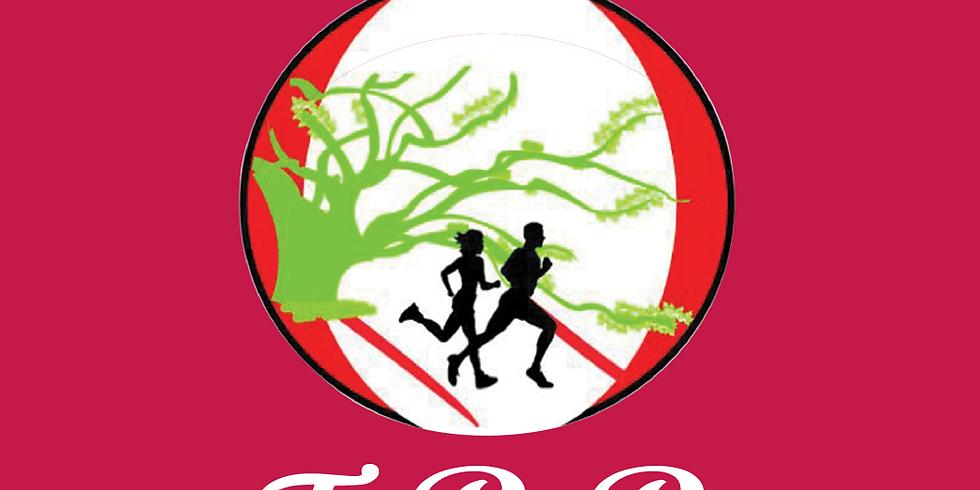 TRR Brooks Run 2018