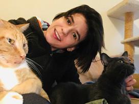 Work, cook, walks, cats and ART - the versatile Claire Micklin