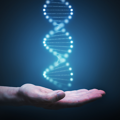 Family History DNA Matching