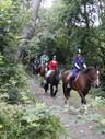 Marros Riding Centre