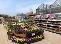 Grandiflora & Bramleys Garden Centre