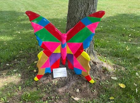 Amazing Butterfly.jpeg