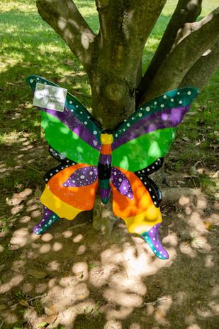 My Cute Butterfly
