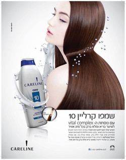 careline - 2012