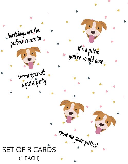 "Set of 3 ""Pittie"" Birthday Card"