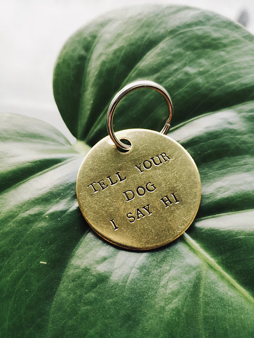 Tell Your Dog I Say Hi™ Keychain