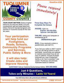 TC Census Sept flyer.fw.png