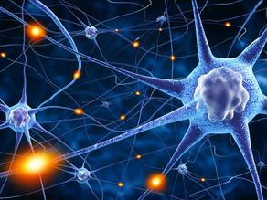 Nova pesquisa sugere que Parkinson poderia nascer no intestino