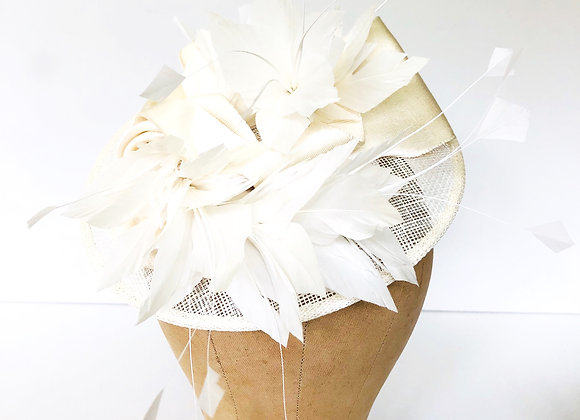 Feather and Ribbon