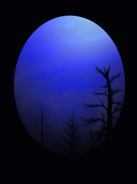 Night Sky, 2021_