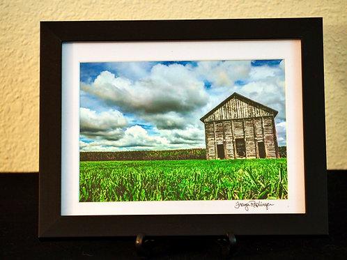 5x7 Framed Print