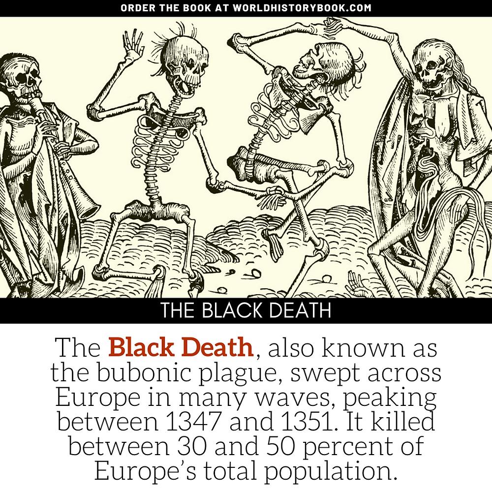 the great world history book stephan dinkgreve renaissance florence black death plague