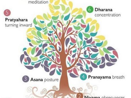The higher taste of Life - Yoga