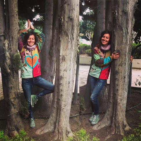 Paphos Yoga Tree