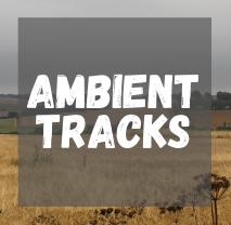 Am Tracks.png