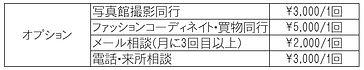 お手軽コース オプション.jpg