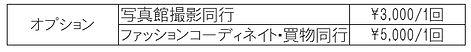 仲人コース オプション.jpg