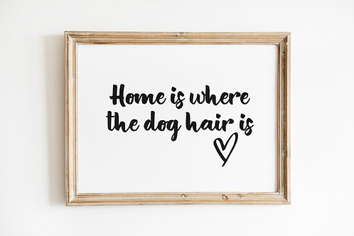 Home is where the dog hair is A4 Print