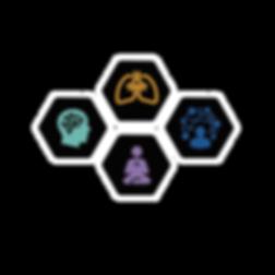 Integrative coaching hex2.png