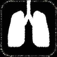 breath icon sketch.png