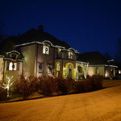 Roof line Lighting with Trunk Wrapped Trees