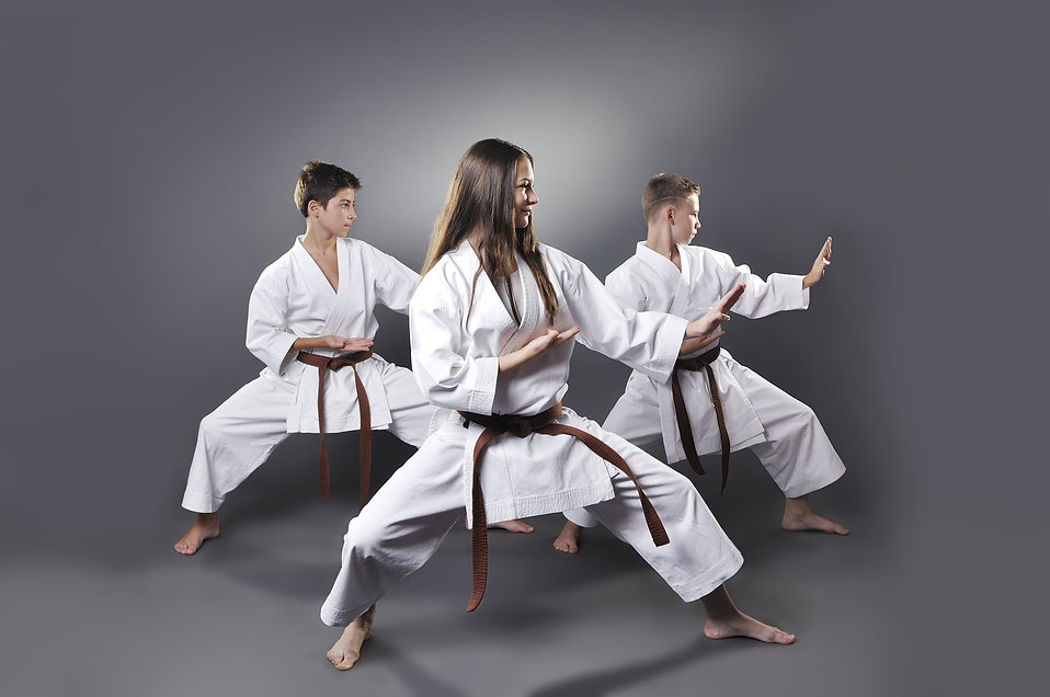 One female and two male brown belt karat