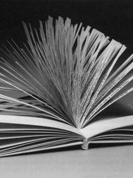 A Hundred Thousand Billion Poems (1961, Raymond Queneau)