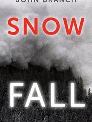 Snow Fall (John Branch, 2012)