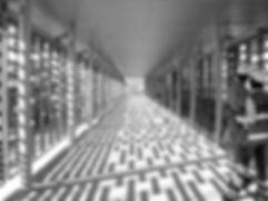 TRANSMETRO 2 BN web.jpg