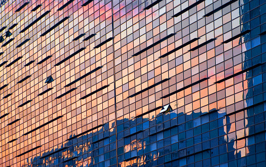 sunset reflecting off a building's windows