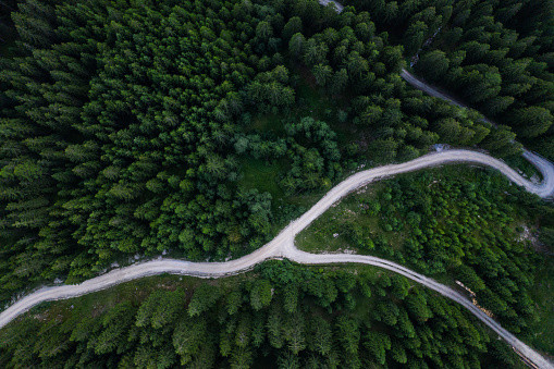 an overhead view of a road splitting in the woods