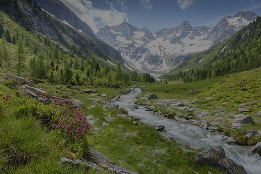 alpine%20hike_edited.jpg