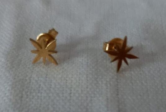 Pendientes acero baño oro estrella