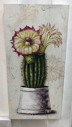 cuadro madera cactus colores 2