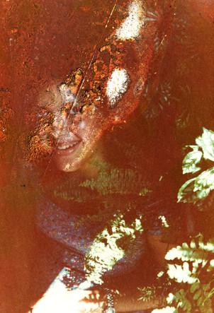 estudo sobre os fantasmas escondidos nas árvores do seu quintal