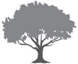 Woodland-Tree-Icon-BW.png