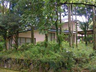 森に囲まれた阿蘇の一軒家、民泊やペンション、食事処など多用途にも