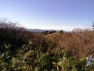 阿蘇の山林売ります