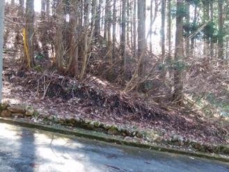 別荘地が欲しい方ならどなたでも、天然のクーラーの中の生活は快適です