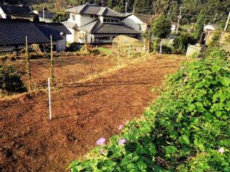 熊本市内の宅地と、ブドウを栽培していた畑があります