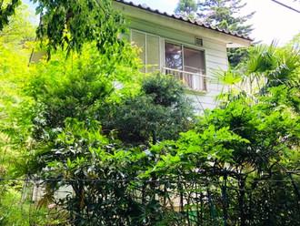 自然豊かな埼玉の土地と建物、お売りします