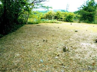 両親が余生をゆっくり過ごす目的で購入した土地でしたが、利用しないままの更地でお売りします