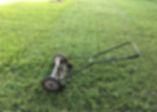 lawn care, push mower, lawn care tips
