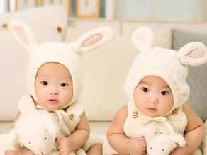 Flexible and Trustworthy Infant Twin Nanny (27516)