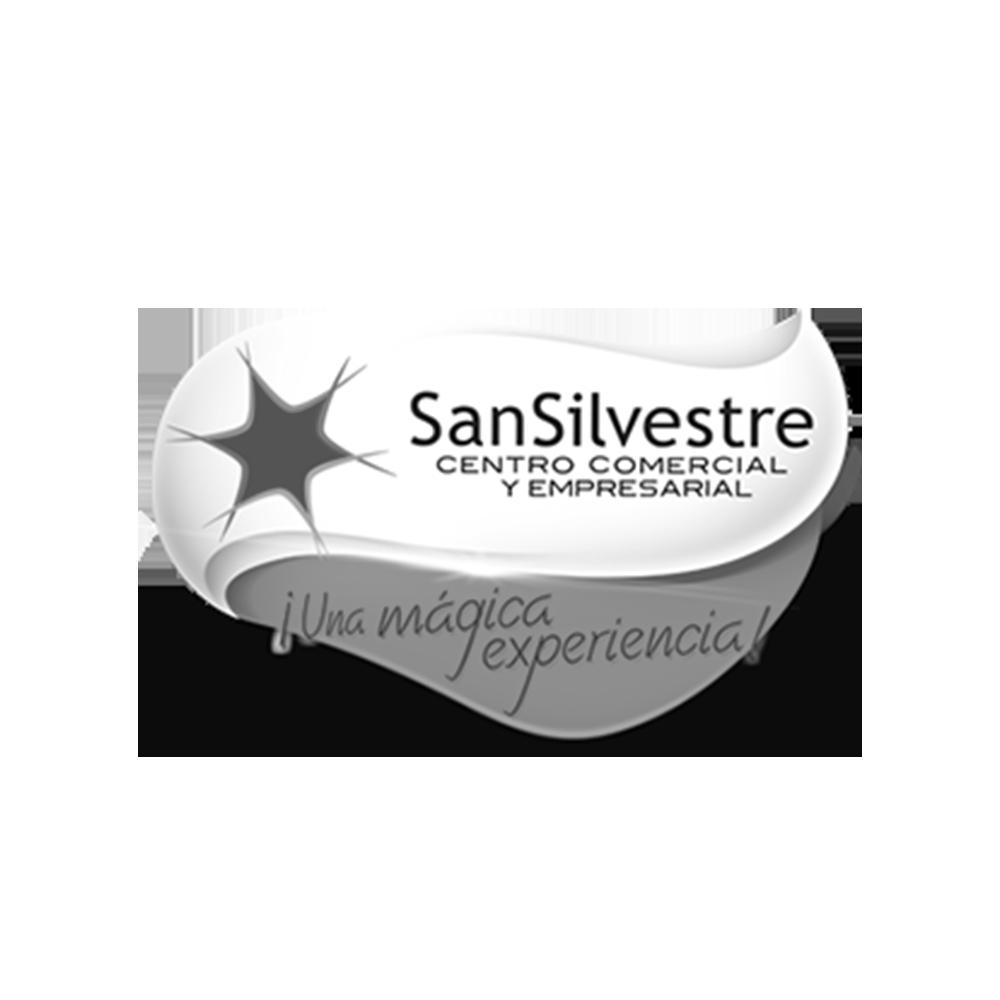 C_C_San_Silvestre.png
