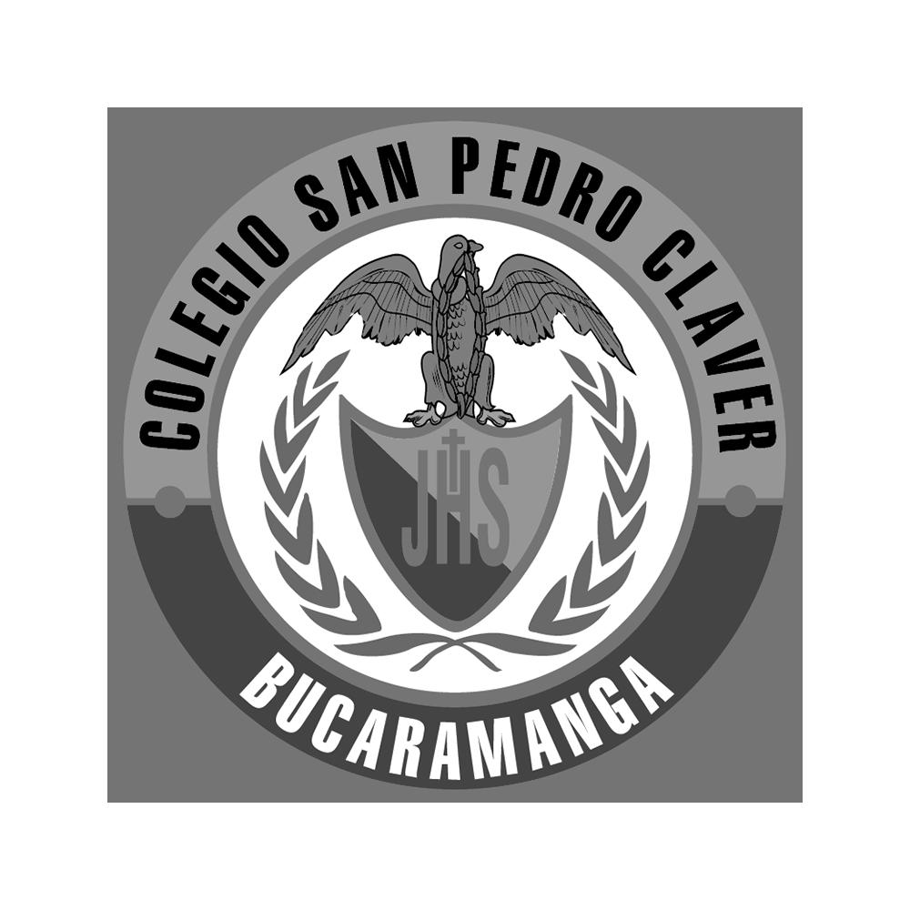 Colegio-San-Pedro.png
