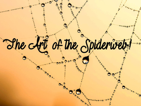 The Art of the Spiderweb!