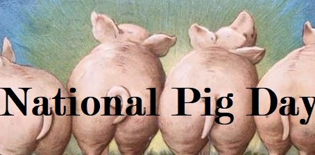 National Pig Day!