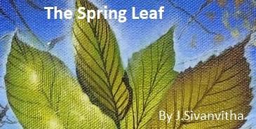 The Spring Leaf